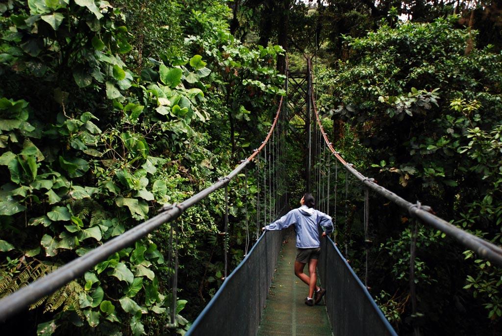 Kostaryka i Nikaragua la fortuna dżungla