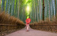 Kraina gejszy i samurajów