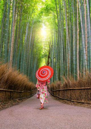 Woman in traditional Yukata with red umbrella at bamboo forest of Arashiyama in Kyoto, Japan