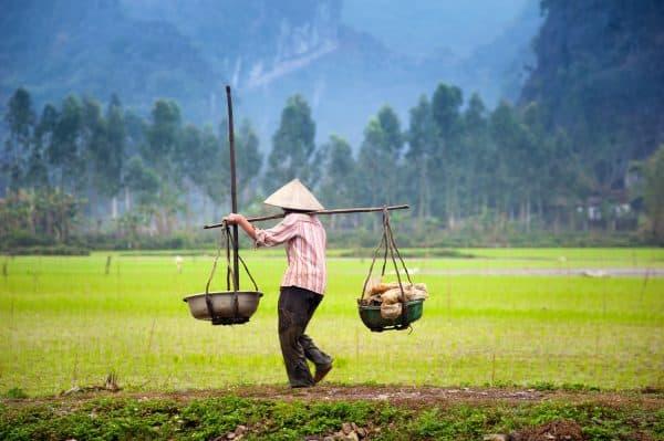 wietnam prowincja ninh binh