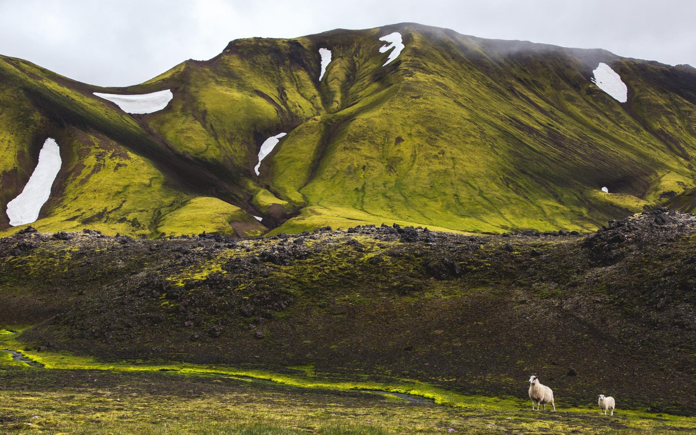 Islandia interior drugie tło XXL