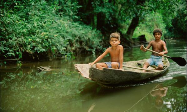 brazylia manaus puszcza amazońska