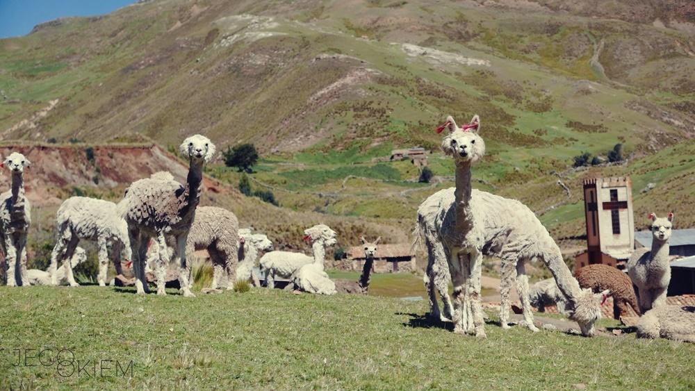 Peru mniej znane