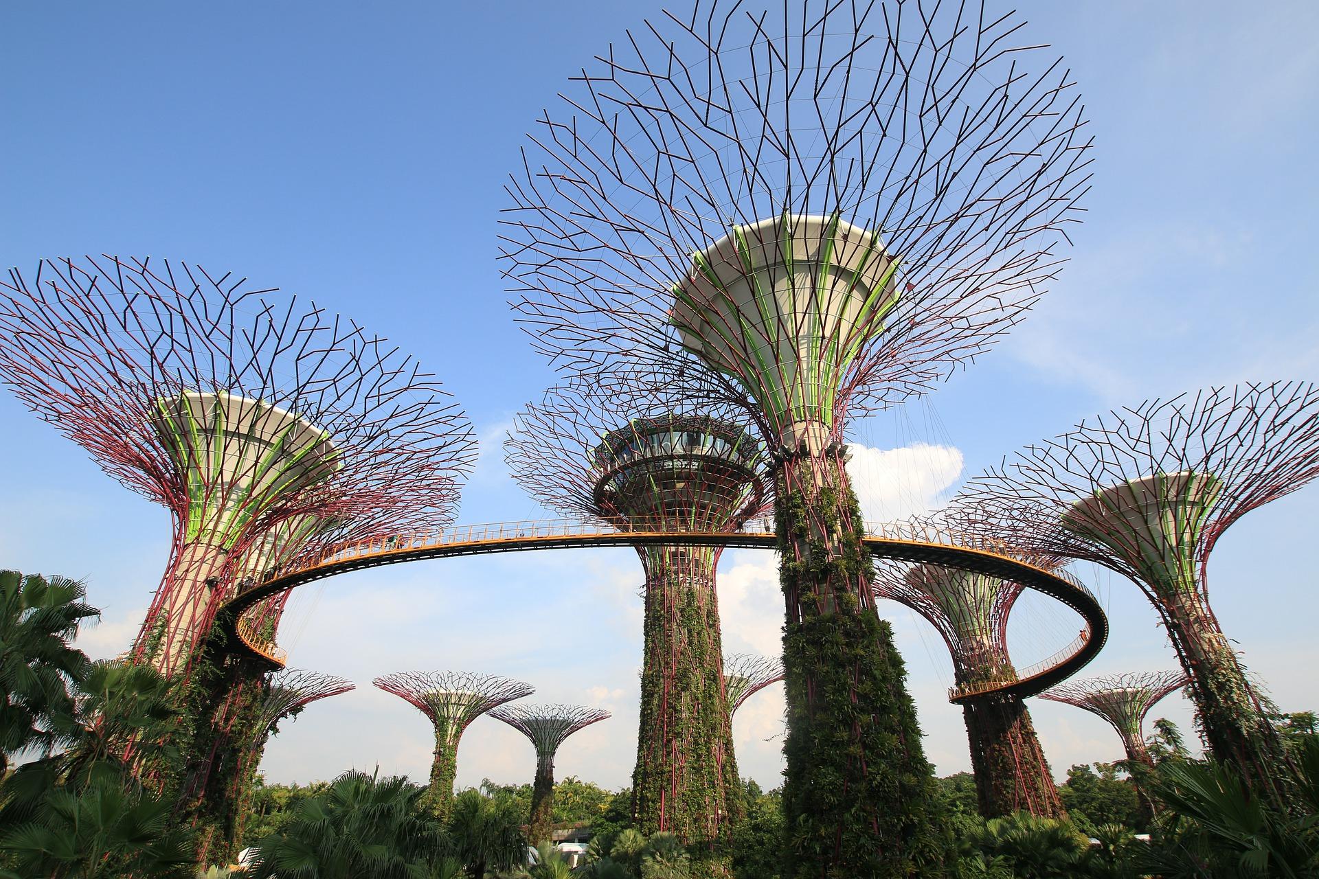 Singapur – co warto wiedzieć przed wyjazdem? 1