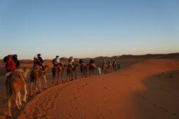 Między pustynią, a górami, czyli Maroko z solistami