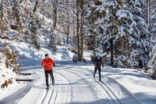 Live Wild Winter Camp biegówki
