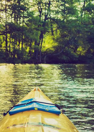 Vintage photo of beautiful Krutynia river landscape photographed from kayak. Photo with vintage mood effect