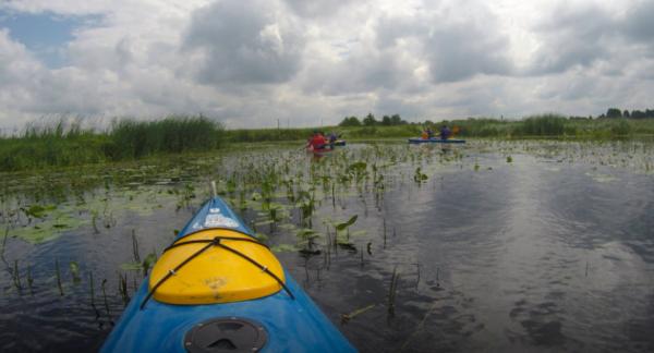 Weekend w Szwecji - kajak, namiot i natura 18