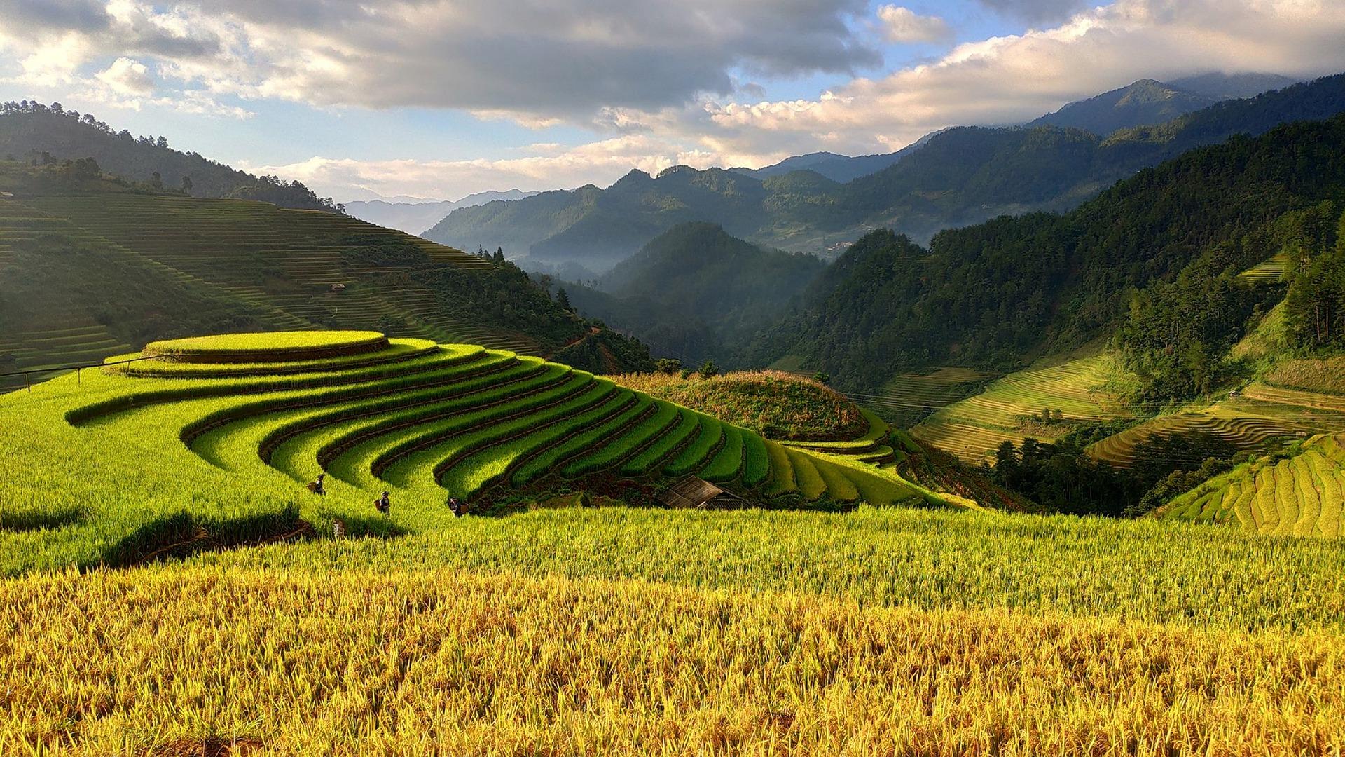Podróż przez dżunglę, wodospady i pola ryżowe 29