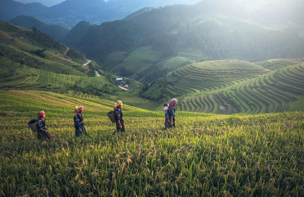 Malezja, czyli Azja Południowo-Wschodnia w pigułce