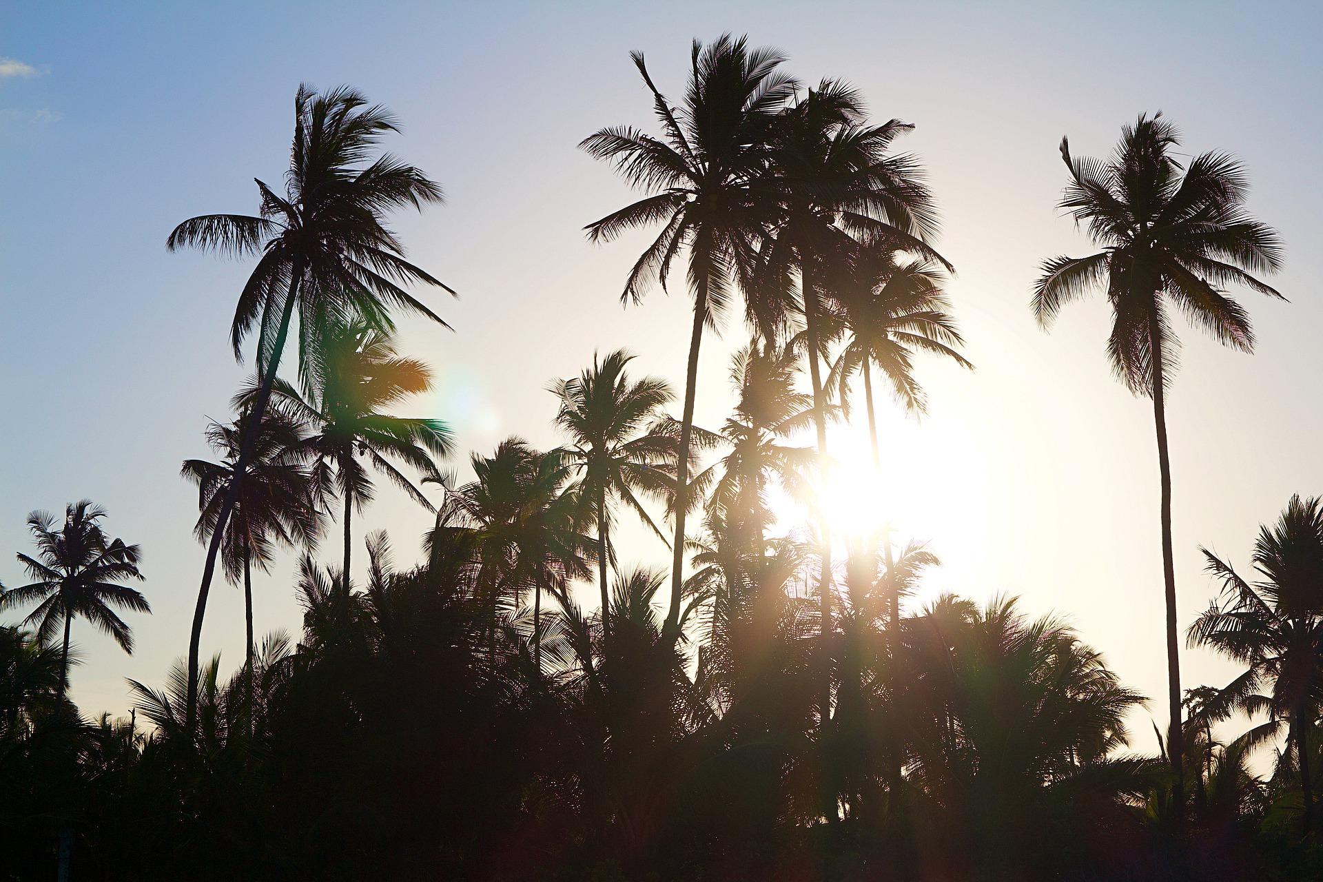 Rajski Zanzibar – top kierunek na zimę