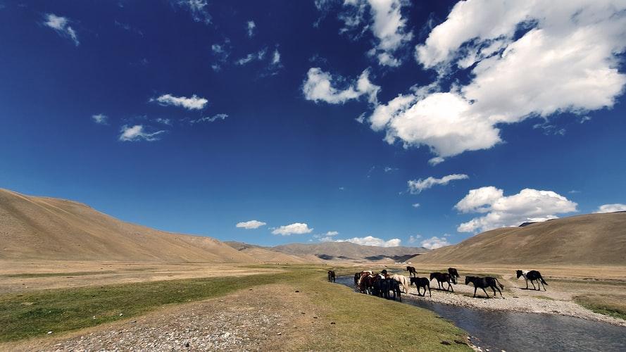 Kirgistan - wciel się w Nomada 11